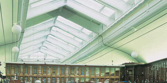 Glass Roofs & Roof Glazing | Lonsdale Metal